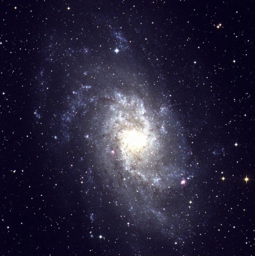More than a billion stars form the whirling spiral galaxy Messsier 33 (M33) in the constellation Triangulum. At a distance of only 3.5 billion light-years, M33 is one of the nearest spiral galaxies.  Photo Credit: Tom Montemayor